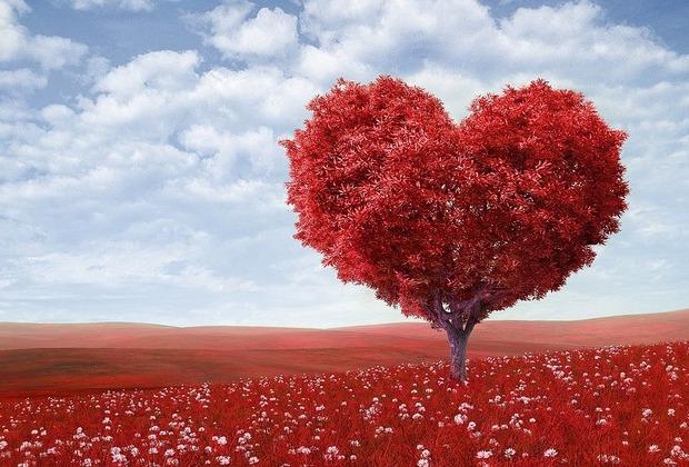"""Το ρήμα """"ξε-αγαπώ"""" δεν υπάρχει σε κανένα λεξικό"""