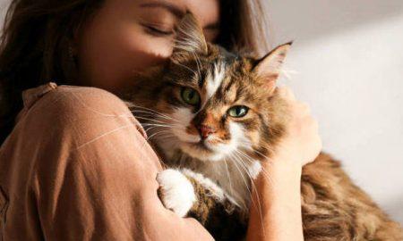 Τις αγαπάω τις γατούλες, από τη Μαρία Σκαμπαρδώνη